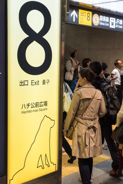 Shibuya - Exit No.8